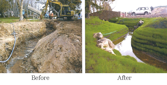 Commercial Landscaping/Slope Stabilization - Before and After
