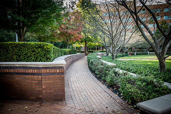 Brick Sidewalk Paver Installation & Landscape Maintenance